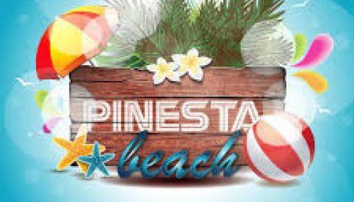 pinesta.com